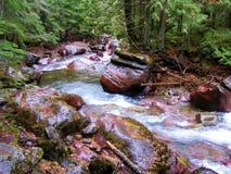 有红色岩石的蒙大拿河 库存照片
