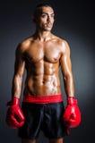 有红色手套的拳击手 免版税库存图片