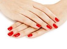 有红色指甲油的美丽的被修剪的妇女的手 免版税库存照片