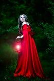 有红色斗篷的美丽的妇女在森林 免版税库存图片