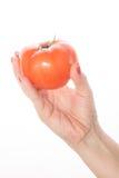 有红色油漆的妇女的手显示在a的蕃茄 图库摄影