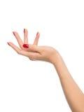 有红色法式修剪钉子的女性手 免版税图库摄影