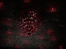 有红色液体吊的许多瓶在装饰的天花板 别致的装饰 库存照片