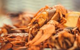 有红色的海鲜盘子在餐馆煮沸了小龙虾准备好晚餐 选择聚焦 图库摄影