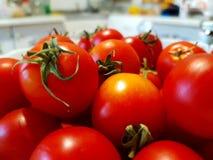 有红色蕃茄特写镜头的一个碗 全部的果子 背景的白色厨房 夏天食物 仍然生活蔬菜 免版税库存图片