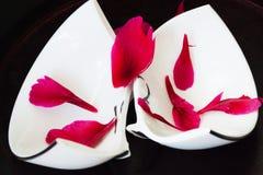 有红色被粉碎的花瓣的残破的板材 免版税库存图片