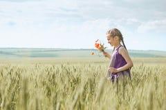 有红色郁金香花的摆在麦田的,明亮的太阳,美好的夏天风景女孩 免版税图库摄影
