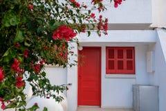 有红色门、窗口和花的白色房子 免版税库存图片