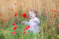 有红色鸦片的女婴在麦田开花 图库摄影