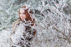 有红色头发的美丽的柔和的女孩在站立在有iniem的一个多雪的森林里的毛皮背心在树分支  库存照片