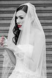 有红色嘴唇和红色钉子的一个新娘 库存照片