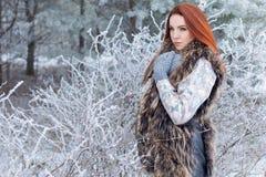 有红色头发的美丽的逗人喜爱的性感的女孩走在树中的一个多雪的森林里的错过了与红色的第一三个月灌木 库存图片