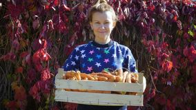 有红萝卜庄稼的年轻微笑的妇女在一个木箱的在她的手上 股票录像