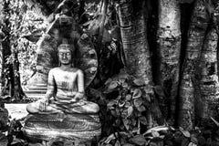 有纳卡语的菩萨七个头 免版税图库摄影