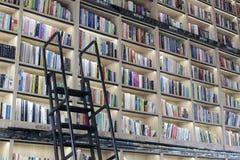 有纸时间书店铁梯子的大书架  免版税图库摄影