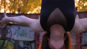 有纹身花刺的一个浅黑肤色的男人在她的耳朵后垂悬得颠倒并且转动,慢动作 影视素材