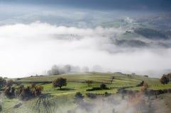 有结构树和灌木的绿色牧场地,在与雾的一个冷早晨在谷 免版税库存图片
