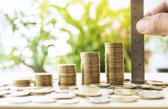 有统治者测量的金钱硬币的手堆积生长在绿色树 库存照片