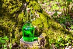 有绿色不可思议的液体的一个烧瓶在一个生苔树桩 不可思议的drin 免版税图库摄影