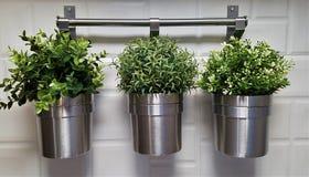 有绿色假植物的三个金属罐 图库摄影