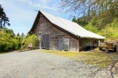有绿色春天横向的老大棚子。 免版税图库摄影