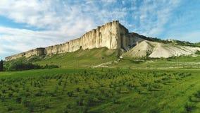 有绿色树和灌木的美丽如画的草甸反对反对天空蔚蓝的美丽的高白色峭壁在温暖的夏日 股票视频