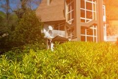 有绿色树篱的土气房子 晴朗的天气 图库摄影