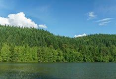 有绿色森林的Alice湖和蓝天在夏日Squamish加拿大 库存照片