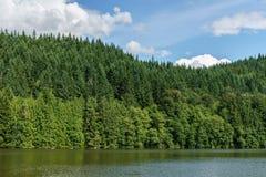 有绿色森林的Alice湖和蓝天在夏日Squamish加拿大 免版税库存照片