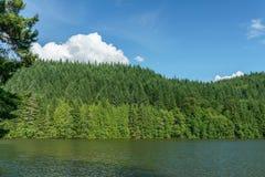 有绿色森林的Alice湖和蓝天在夏日Squamish加拿大 免版税图库摄影