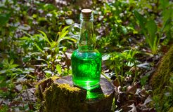 有绿色液体的瓶在一个树桩在一个晴天 库存照片