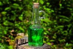 有绿色液体的瓶在树桩 库存图片