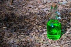 有绿色液体的瓶在森林里 免版税库存照片