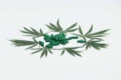 有绿色片剂的大麻叶子 免版税库存照片
