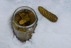 有绿色的一个开放玻璃瓶子装在白色雪的黄瓜于罐中 免版税库存图片