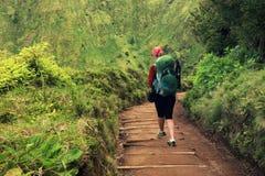 有绿色背包的妇女走在足迹的导致绿色和蓝色湖,圣地米格尔海岛 免版税库存照片