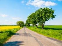 有绿色胡同的柏油路 农村捷克的横向 免版税库存图片