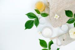 有绿色草本叶子的化妆容器在白色背景,大模型,牛奶店奶油,胶凝体,candels自然美人产品 库存图片