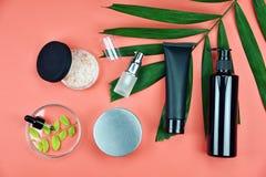 有绿色草本叶子的,烙记的大模型的空白的标签,自然美容品概念化妆瓶容器 图库摄影