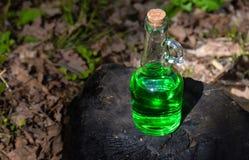 有绿色透明液体的一个瓶在被烧的一个森林里 库存照片