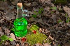 有绿色透明液体的瓶在红色附近的一个森林里 库存照片
