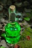 有绿色透明液体的瓶在红色附近的一个森林里 免版税库存照片