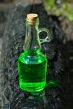 有绿色透明液体的瓶在charre的森林里 库存照片