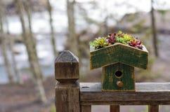 有绿色eco屋顶的鸟房子 免版税库存图片
