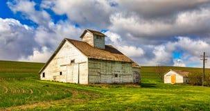 有绿草和多云天空的白色谷仓在华盛顿 免版税图库摄影