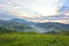 有绿草的美丽的高山草甸 日出 在狂放的特兰西瓦尼亚小山的风景 Holbav 罗马尼亚 低调,黑暗的backgr 免版税图库摄影
