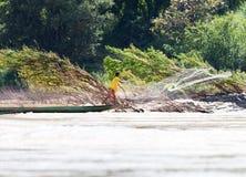 有网的渔夫在湄公河 免版税库存图片