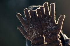 有羊毛手套的手 免版税库存图片