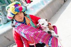 有羊羔的秘鲁女孩 库存图片