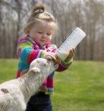 有羊羔的逗人喜爱的小女孩 免版税库存照片